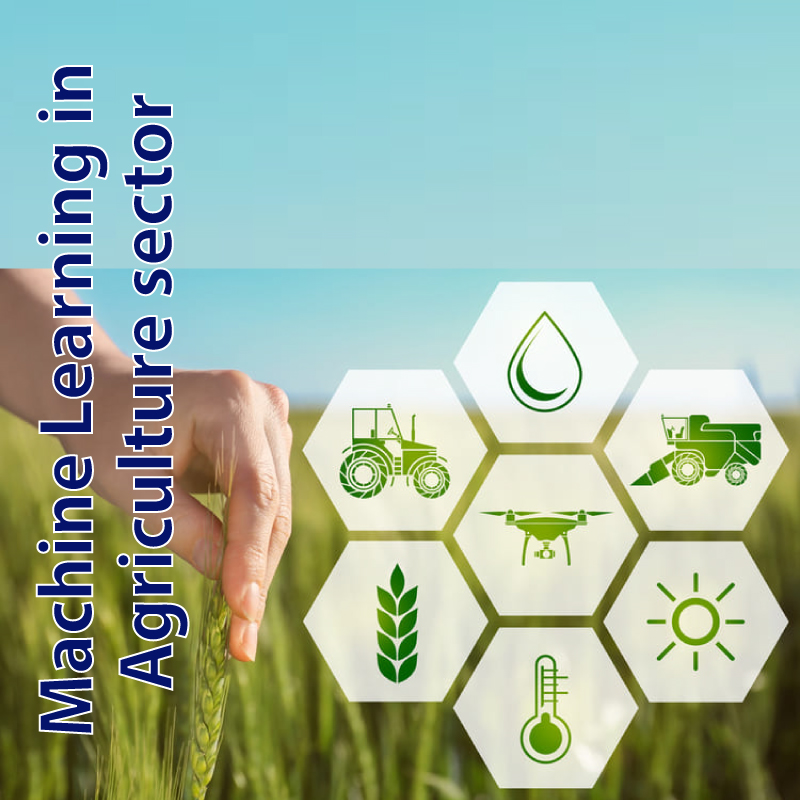 Machine-Learning-in-Agriculture-sector